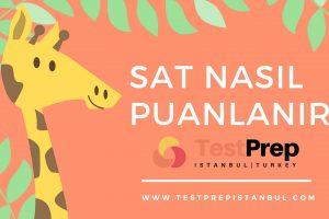 sat_nasil_puanlanir_sat_puan_hesaplama